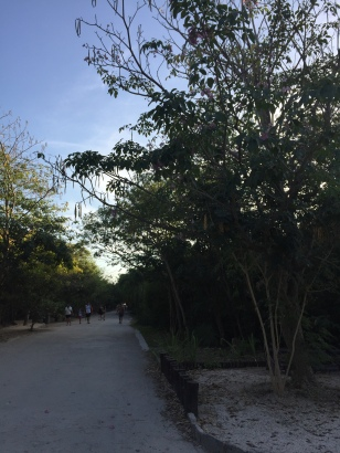 Walking to the beach in Tulum, Mexico